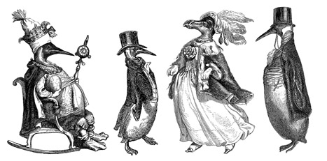 Penguin Anthropomorphs