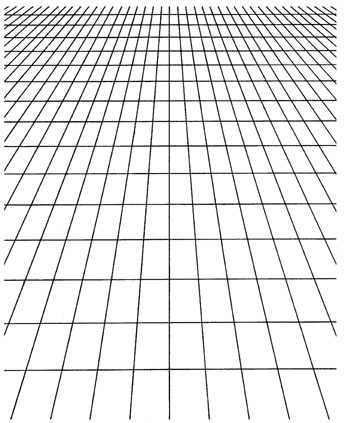 Large Perspective Grid
