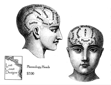 Pair of Phrenology Heads
